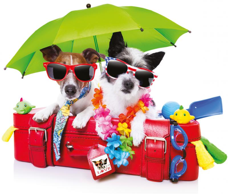 zonnige dagen... kies voor een zonnebril op sterkte!